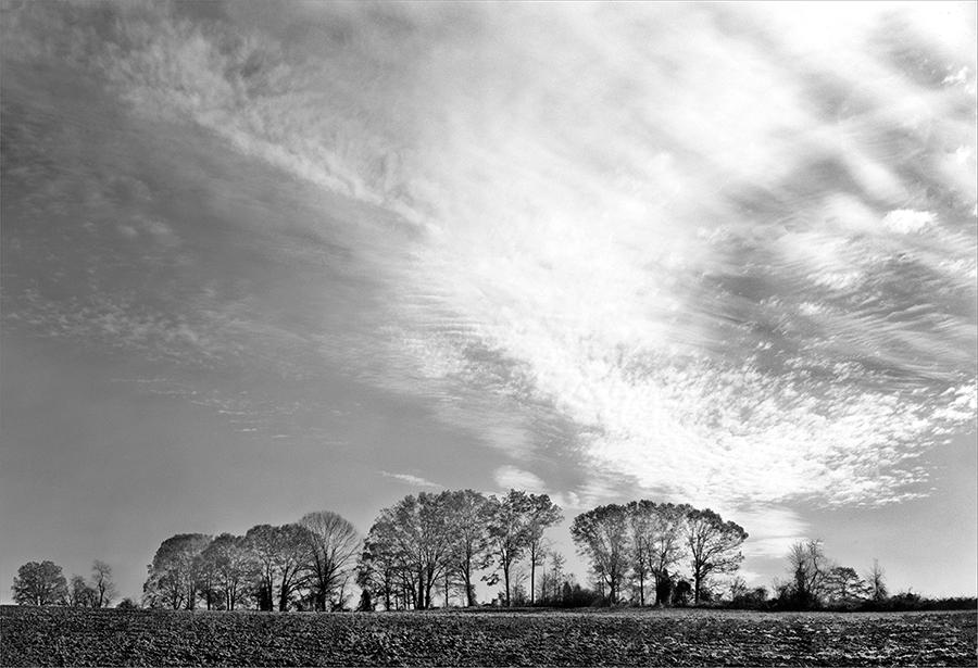 HWY 54 Landscape